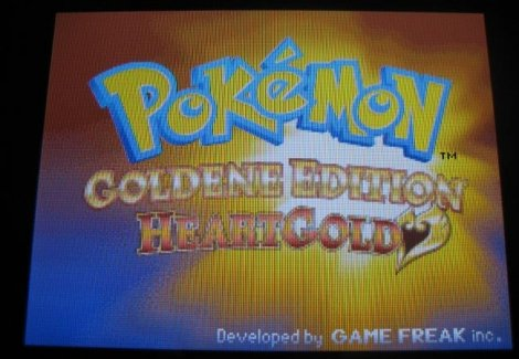 pokemon_heartgold_5
