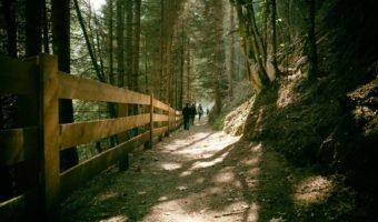Freizeitticket zum Wandern